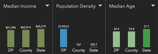 Chicago Neighborhood Statistics