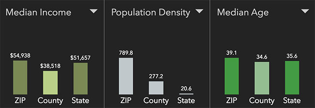 Boise Neighborhood Statistics