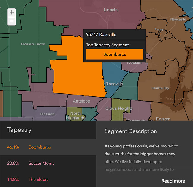 Roseville Neighborhood Demographics