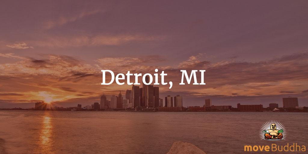 Remote Working Detroit