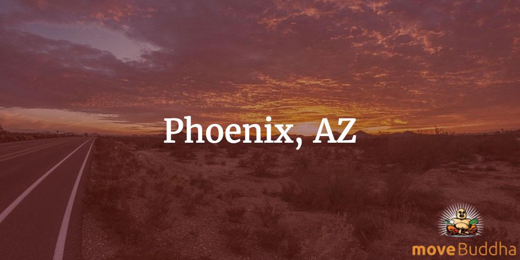 Remote Working Phoenix