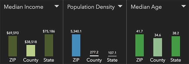 Tacoma Neighborhood Statistics