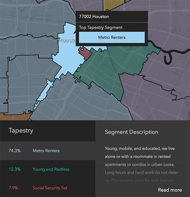 Houston Neighborhood Demographics